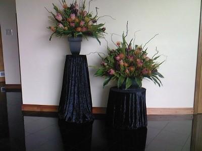 Protea Foyer