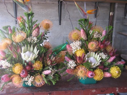 Large Protea Arrangement